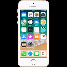 Apple iPhone SE Gold vorne Katalog 99924429