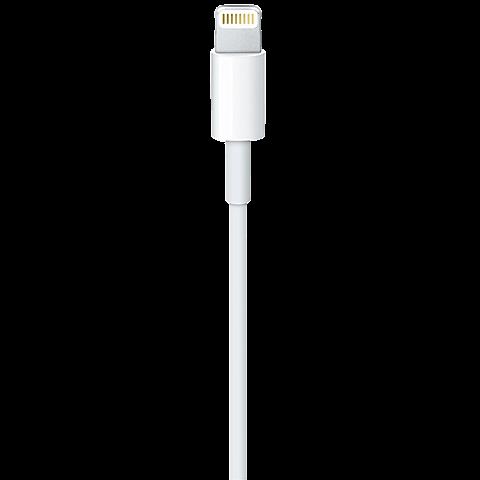 Apple USB-C auf Lightning Kabel (1m) Weiß 99925278 hinten