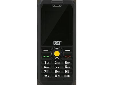 Wissenswertes zum CAT B30