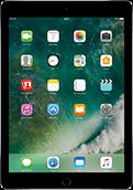 iPad Pro 9.7'' Space Grau