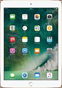 iPad Pro 9.7'' Gold
