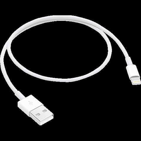 Apple Lightning auf USB Kabel (0.5m) Weiß 99927860 vorne
