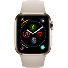 Apple Watch Series 4 Edelstahl-40 mm, Armband-Sport-Stein, GPS und Cellular Gold Katalog