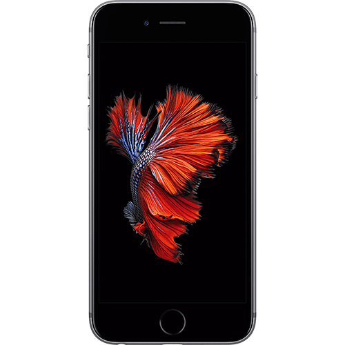 Apple iPhone 6s Spacegrau Vorne