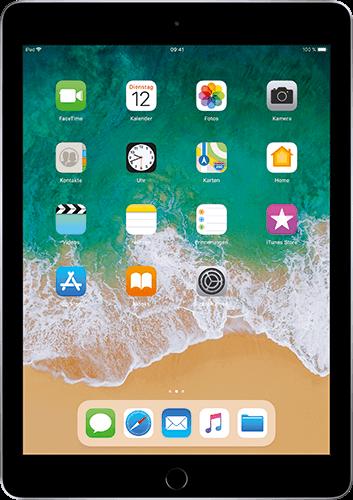 Apple iPad (6. Generation) WiFi und Cellular Space Grau