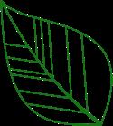 Blatt 4 Grün