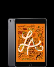 iPad mini (5. Gen)