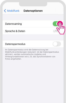 Daten-Roaming für iOS aktivieren - Schritt 3